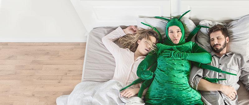 Dormeo dušeci